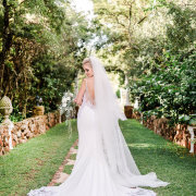 veil, wedding dresses, wedding dresses, wedding dresses