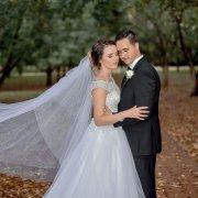 beaded, veil, wedding dress