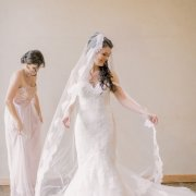 lace, veil, wedding dress, wedding dress, wedding dress