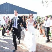 confetti, suits, suits, suits, suits, suits, suits, suits, wedding dresses, wedding dresses, wedding dresses