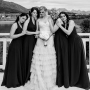 bride and bridesmaids, wedding dresses, wedding dresses, wedding dresses, wedding dresses