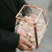 confetti, petals