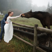 bride and groom, bride and groom, horse