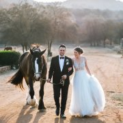 bride and groom, bride and groom, bride and groom, horse, suits, suits, suits, suits, suits, suits, suits, wedding dresses, wedding dresses, wedding dresses
